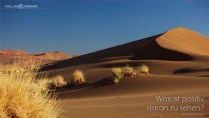 PALLAS-Seminare Desktop Preview - Foto einer großen Sanddüne
