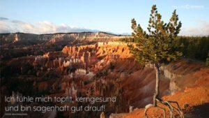 PALLAS-Seminare Desktop Preview - Bryce Canyon, USA